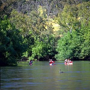 The famous Murray River